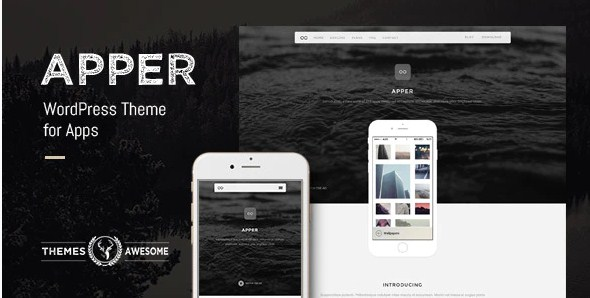 Latest Photo of  Apper WordPress Theme for Apps