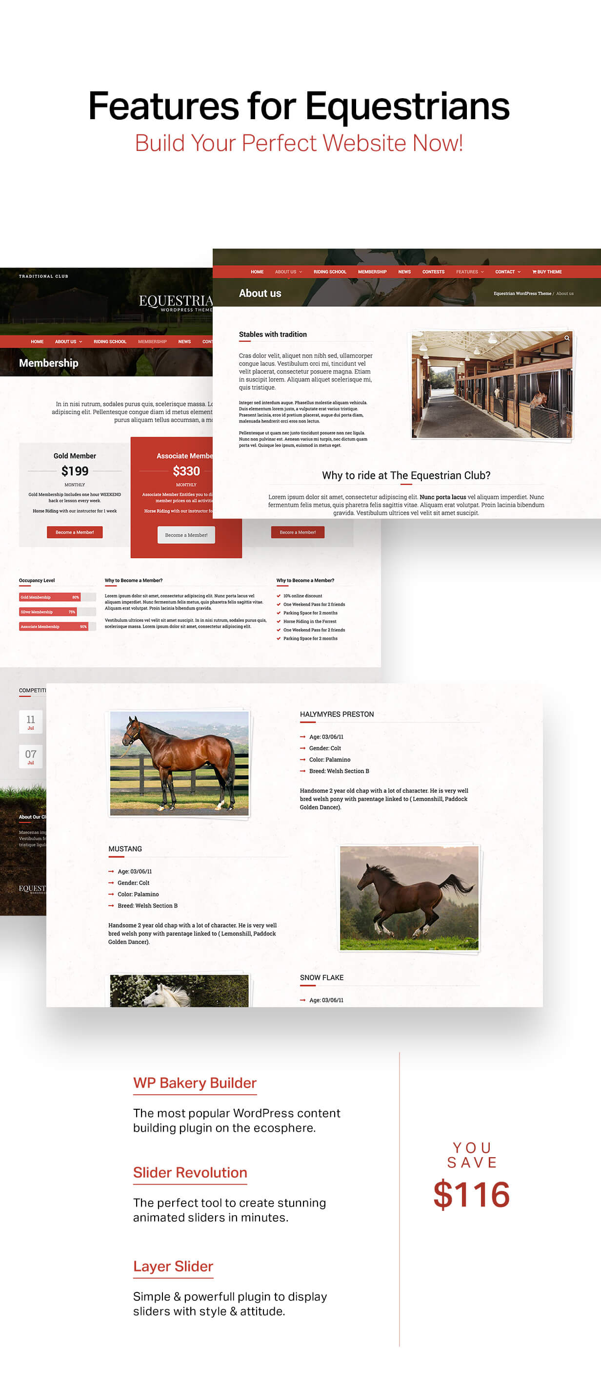 Latest Photo of  Equestrian Horses and Stables WordPress Theme